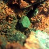 cuprita cerro minado almeria 4mm.jpg (Autor: Nieves)