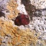 granate el hoyazo nijar almeria cristal 5mm.jpg (Autor: Nieves)