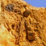vanadinita los lastonares albuñuela granada cristales de 2mm.jpg (Autor: Nieves)