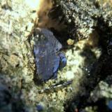hematites archidona malaga cristales de 1cm.jpg (Autor: Nieves)