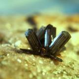 rutilos macael almeria cristales de 8mmm.jpg (Autor: Nieves)