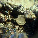 Cerusita san valentin la union Murcia, cristal de 4mm.jpg (Autor: Nieves)
