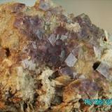 Fluorita sobre cuarzo La Cabaña  Berbes  Asturias año 1997 cristal más grande 1,2cms. (Autor: Gelo)