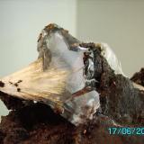 Celestina fibrosa metida en un cristal de yeso Minas Pilar de Jaravia   sierra del Aguilón  Almeria año 1997 taaño cristal 3,5cms (Autor: Gelo)