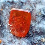 Wulfenita. Mina Red Cloud, La Paz Co., Trigo Mountains, Arizona, EE.UU. Cristal de 1cm. Col. y fotos Nacho Gaspar. (Autor: Nacho)