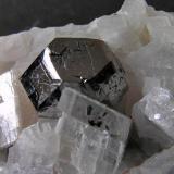 Carrollita. Mina Kamoya South, Kambove, R.D. Congo. Cristal de 1,7x1,3x1 cm. Col. y foto Nacho Gaspar. (Autor: Nacho)
