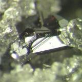 Macla de cristales de pirargirita de 2 mms. Mina Santa Catalina, Hiendelaencina, Guadalajara (Autor: Adrian Pesudo)
