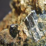 Diopsido (variedad Fassaita) Mina el Peñoncillo, Ojén, Málaga, Andalucía, España Cristales 1´5cm (Autor: Nieves)