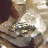 Löllingita Mina Monchi, Burguillos del Cerro, Badajoz, Extremadura, España. cristal 8 mm (Autor: Nieves)