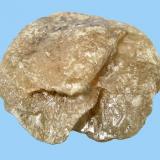 "Wulfenita Mina ""Teresita"", en el área mineralizada de Montcada i Reixac/Sant Fost de Campsentelles, Vallès Occidental/Vallès Oriental, Cataluña 28 mm x 27 mm x 14 mm (Autor: Carles Millan)"