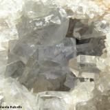 Celestina, calcita. Langre, Cantabria, España. Otro detalle de los cristales de celestina, de una nitidez y un color destacables. (Autor: Frederic Varela)