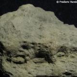 Celestina en geoda. Langre, Cantabria, España. Cuesta de apreciar en la foto, pero en el reverso de la geoda y a pesar de estar muy deformada, se distinguen en algunas zonas las alineaciónes de los poros ambulacrales (sucesión vertical de pequeños puntos alineados en la zona central) típicos de los fósiles de equínidos (erizos de mar). (Autor: Frederic Varela)
