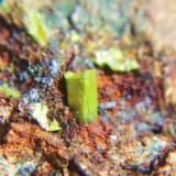 Piromorfita Sierra de Baza, Granada, Andalucía, España. cristal 3 mm (Autor: Nieves)