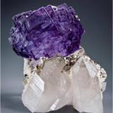 This piece has a 6 cm multiple stepped purple rimmed fluorite sitting on 2 perfect Quartz crystals.  In the valley between are some small dark brown Scheelites. There is also a small chalcopyrite on the back side. This measures 11.3 x 9 x 5 cm and is from Yaogangxian Mine, Hunan Province, China (Author: VRigatti)