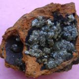 Adamite. Mapimí, Durango, Mexico. size:10x8cm (Author: javmex2)