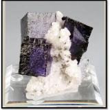 A nice combination of small dark blue/purple fluorites on sparkly dolomite from the Elmwood mine Tennessee. this piece is 6 cm tall and 5 cm wide and length. One photo is backlit. Weighs 70 grams (Author: VRigatti)
