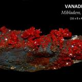 VANADINITA Mibladen, Midelt, Marruecos TAMAÑO: 16 x 8 x 4 cm (Autor: Marc C)