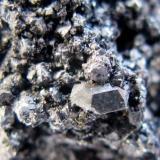 Calcosina. Mina de Cobre Las Cruces. Gerena. Sevilla. Tamaño del cristal aprox. 1.5 mm. (Autor: Jose Luis Otero)