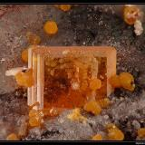 Wulfenite with mimetite Rowley mine, Arizona, USA fov 10 mm (Author: ploum)