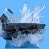 Hübnerite, quartz Labor Victoria, Mundo Nuevo Mine, Huamachuco, Sanchez Carrion Province, La Libertad Department, Peru 80 mm x 77 mm x 70 mm. Main hübnerite crystal: 55 mm wide (Author: Carles Millan)