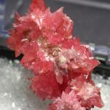 Rhodochrosite from Peru size about 3.3x1.8x1.7 cubic cm the dealer only said it is from Peru.but such form is rare for me, so I wondered the loaction is worng or not.coz it looks like the Germany ones. (Author: pro_duo)
