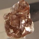 Axinita del Plutón de la Cabrera, Cristales de 1 cm (Autor: Ramón Jiménez)
