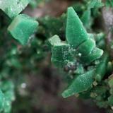 Torbernita, Vimianzo. Encuadre 5 mm (Autor: usoz)