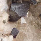 Cristales de fluorita recubiertos de pirita sobre cuarzo. El mayor 4 mm. Cillarga, Ponteareas (Pontevedra) (Autor: usoz)