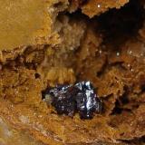 Cuprita<br />Minas El Valle-Boinás, El Valle, Begega, Belmonte de Miranda, Asturias, Principado de Asturias, España<br />Agrupación de cristales de 1 cm.<br /> (Autor: Echevarria)