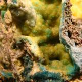 Turquesa sobre WavellitaPalazuelo de las Cuevas, San Vicente de la Cabeza, Comarca Aliste, Zamora, Castilla y León, EspañaPieza 3,8 x 2,5 cm.  FOV 2 x 1 cm. (Autor: Calita)