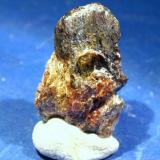 Casiterita<br />Grupo minero Calabor, Calabor, Pedralba de la Pradería, Zamora, Castilla y León, España<br />Cristal de 3 cm. aproximadamente<br /> (Autor: Calita)