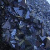 MAGNETITA -(detalle de la pieza anterior) - Coto minero San Guillermo - cantera San Carlos, en Valuengo - Jerez de los Caballeros (Badajoz) (Autor: David Parra Z)