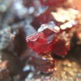 Cinabrio<br />Distrito Minero de Almadén, Almadén, Ciudad Real, Castilla-La Mancha, España<br />Cristal 8 mm.<br /> (Autor: Nieves)