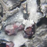 Cinabrio, Antimonita (estibina)<br />Mina Escarlati, Puerto de las Señales, Maraña, Comarca Montaña Oriental, León, Castilla y León, España<br />11 x 9 cm.<br /> (Autor: minero1968)
