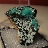 Aurichalcite, Kelly Mine, Socorro county. Thumbnail. (Author: Darren)
