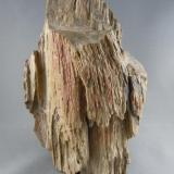 Petrified Wood about 5 miles north west of Ocotillo on the San Diego Imperial county line. 13.3cm x 19.2cm (Author: rweaver)