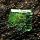 Zeunerita sobre Goethita Minas José, Chóvar, Castellón, Comunidad Valenciana,  España Grupo cristalizado de 2 mm. (Autor: Adrian Pesudo)
