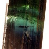 Turmalina com muitas variações de cores - 5,2 cm X 2,0 cm X 1,6 cm Minas Gerais, Brasil (Author: silvio steinhaus)