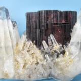Hübnerite, quartz Huayllapon mine, Pasto Bueno, Pallasca, Ancash, Peru 66 mm x 45 mm x 35 mm (Author: Carles Millan)