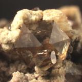 "Quartz, transparent and ""smoky"". These crystals have very reduced prism faces. Huron River near Milan, OH Main crystal is 5.3 mm wide. (Author: Pete Richards)"