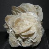 Gypsum. Villalvilla. Madrid. Spain. 5 cm (Author: nimfiara)