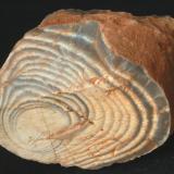 Silex Bandeado - Aiguafreda, Vallès Oriental, Barcelona, Catalunya, España Medidas: 5x4x2,7 cms (Autor: Joan Martinez Bruguera)