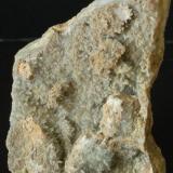 Celestina - Santa Eulàlia de Riuprimer, Osona, Barcelona, Catalunya, España Medidas. 7x5x1,5 cms (Autor: Joan Martinez Bruguera)