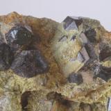 Epidota & Granate (detalle de la pieza anterior) - Cantera Los Serranos, Albatera, Alicante, Comunitat Valenciana, España Medidas: 11 x 6,5 x 4 cms (Autor: Joan Martinez Bruguera)