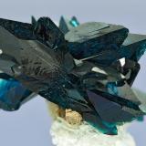 Veszelyite Black Pine Mine, Flint Creek Valley, Philipsburg District, Granite Co., Montana Specimen size 1.4 x 1.1 cm (Author: am mizunaka)