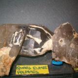 Cuarzos ahumados limpiados. Palamós, Bajo Ampurdán, Gerona, Cataluña, España. 12x6 pieza grande 6x4 piezas pequeñas (Autor: marcel)