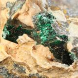 "Cristales de malaquita. (Cristal mayor: 0,5 mm). Mina ""2º Guadalmez"", nº 6992. T.m. de Cardeña (Córdoba) (Autor: Inma)"