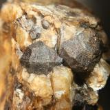"Granate en pegmatita. (cristal mayor: 1 cm). Antigua mina ""Las Esmeraldas"", paraje ""La Alcubilla"". T.m. de Villaviciosa de Córdoba (Córdoba) (Autor: Inma)"