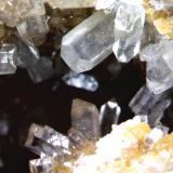 Típica cristalización de la Celestina, Ivorra (La Segarra) Lerida. el cristal más grande 3 x 1´5 mm. (Autor: Jesus Franquesa Baucells)