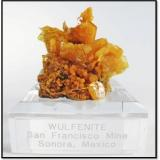 Wulfenite and Mimetite from San Francisco mine Mexico. Measures 4.5 x 4.5 x 4.2 cm and weighs 45 grams (Author: VRigatti)